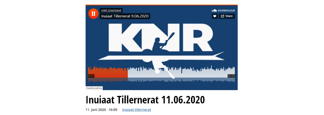 Radio interview med ESANI A/S